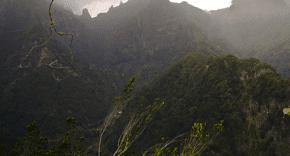 survivalisme et nature